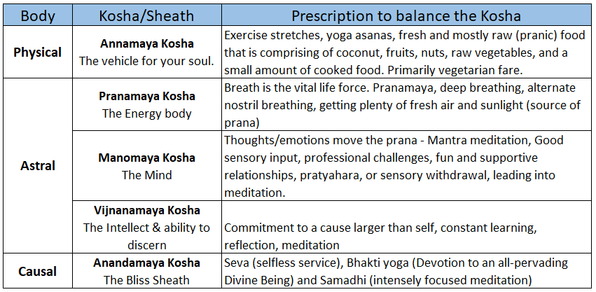SSY five koshas prescription includes meditation, exercise, diet, sunlight, and more